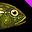 물 밖에서는 추한 모습을 하고 있지만 물속에서는 용맹스러운 남성으로 변신한다는 전설을 가지고 있는 신비의 물고기 입니다.